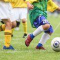 Adidas UEFA Euro 2016 Official Match Soccer Ball Review
